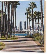San Diego Skyline With Coronado Island Bayshore Bikeway Wood Print