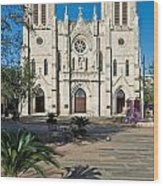 San Fernando Cathedral Wood Print