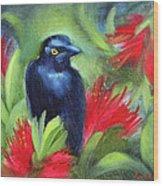 San Francisco Black Bird Wood Print