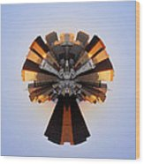 San Francisco Samourai - Stereographic Wood Print