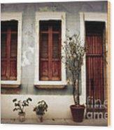 San Juan Living Wood Print by Perry Webster