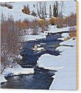 San Juan River At At Last Ranch Wood Print