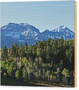 San Juans Colorado Wood Print