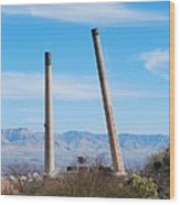 San Manuel 8 Wood Print by T C Brown
