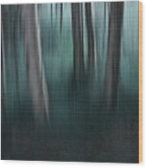 Sanctify Wood Print