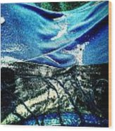 Sand And Shells On Dress Wood Print