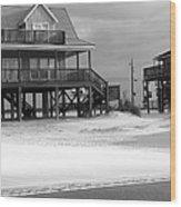 Sand And Stilts Wood Print