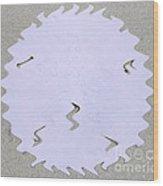 Sand Dollar Wiggle Wood Print