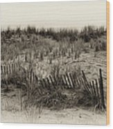 Sand Dune In Sepia Wood Print