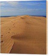 Sand Dune Of Canaria Wood Print