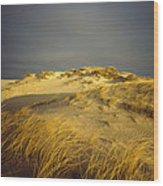 Sand Dunes And Beach Grass In Golden Wood Print