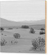 Sand Dunes At Death Valley California Usa Wood Print