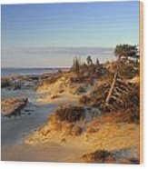 Sand Dunes At Sunset, Lake Huron Wood Print