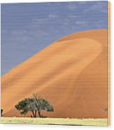 Sand Dunes, Sossusvlei Wood Print