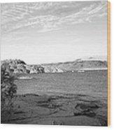 Sand Hollow River Wood Print by Gilbert Artiaga