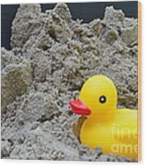 Sand Pile And Ducky Wood Print