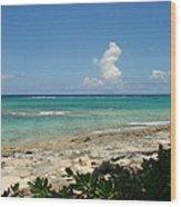 Sandals Cay Wood Print