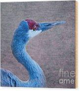 Sandhill Crane 3 Wood Print