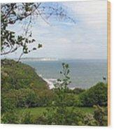 Sandown On Isle Of Wight Wood Print
