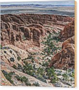 Sandstone Fins Of Arches National Park Wood Print