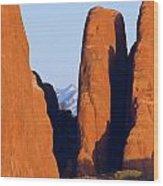 Sandstone Fins Wood Print