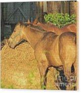 Sandy Eating Hay Wood Print