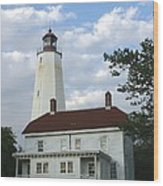 Sandy Hook Lighthouse And Building Wood Print