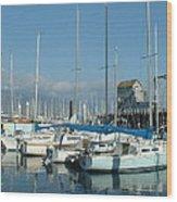 Santa Barbara Marina Wood Print by Linda Pope