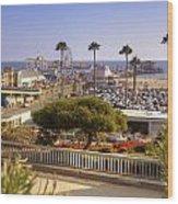 Santa Monica Wood Print