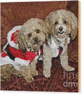 Santa Puppies Wood Print