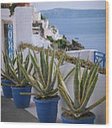 Santorini Entrance Wood Print