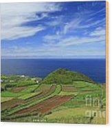 Sao Miguel - Azores Islands Wood Print by Gaspar Avila
