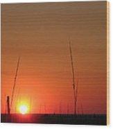 Sarasota Sunset Wood Print