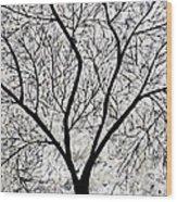 Sarvaras Wood Print
