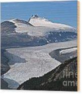 Saskatchewan Glacier Banff National Park Wood Print