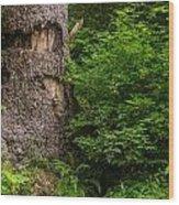 Sasquatch Rubbing Tree Wood Print