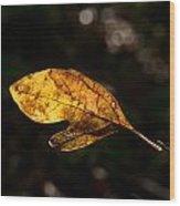 Sassafras Leaf Glowing Wood Print