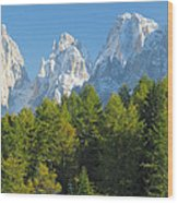 Sasso Lungo Group In The Dolomites Of Italy Wood Print