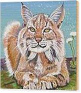 Sassy Lynx Wood Print