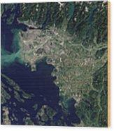 Satellite View Of The Frasier River Wood Print