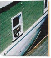 Sausalito Boat Cat Wood Print