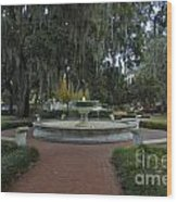 Savannah Square And Fountain Wood Print
