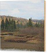 Sawtooth Swamp Wood Print