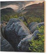 Saxon Switzerland Wood Print