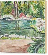 Sayen Pond Wood Print