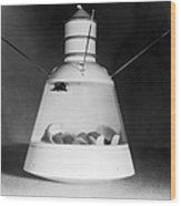 Scale Model Of Mercury Capsule Shape B Wood Print