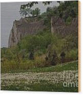 Scarborough Bluffs 2 Wood Print