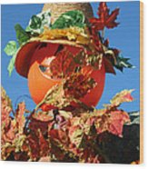 Scarecrow Boa Wood Print