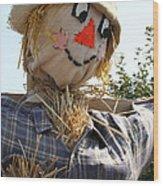 Scarecrow Farmer Wood Print