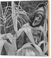 Scarecrow In The Corn Black And White Wood Print